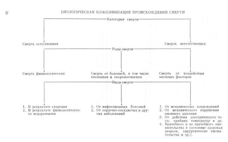 классификация смерти
